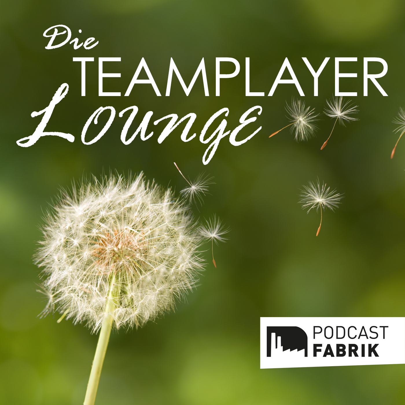 Teamplayer Lounge Podcast Cover
